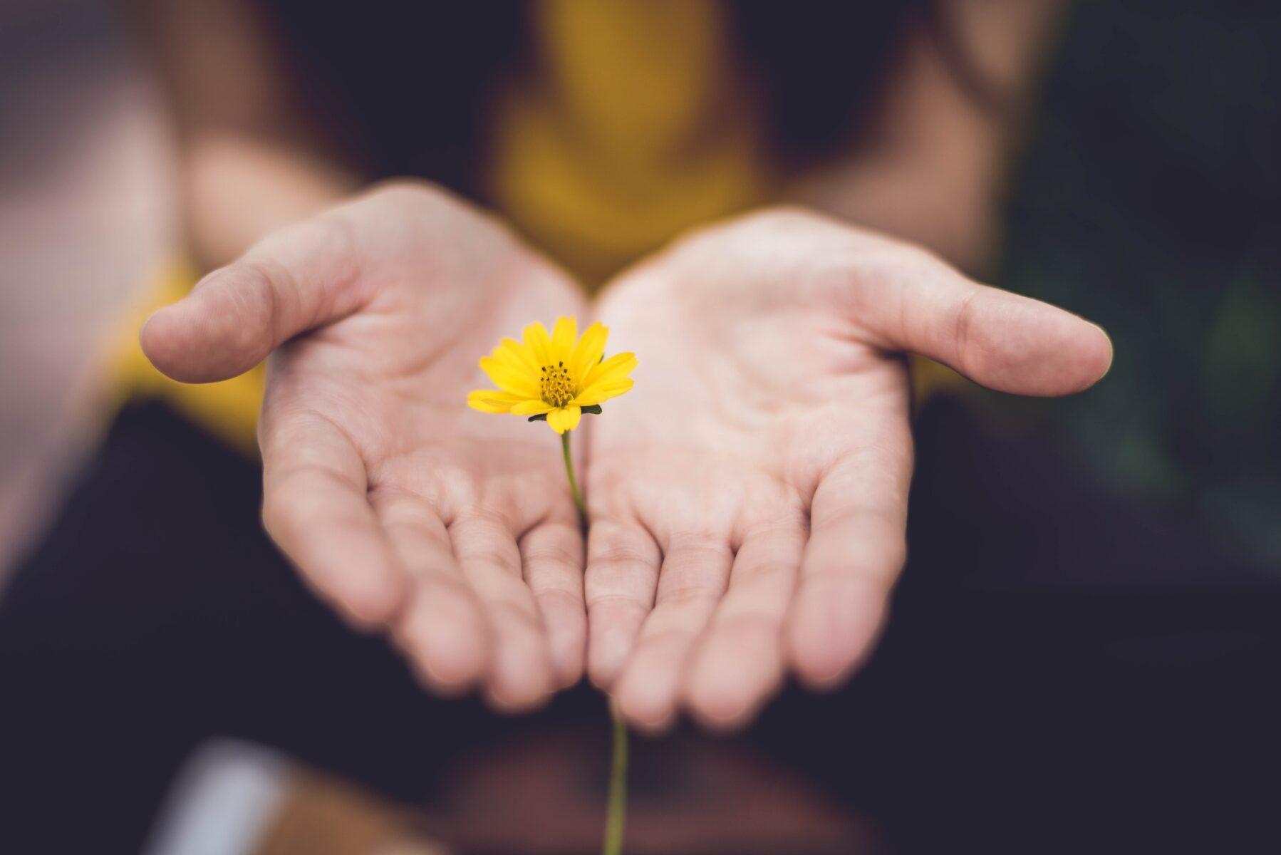 lina-trochez-forgive others